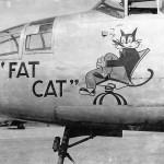 B-25 Mitchell Fat Cat nose art