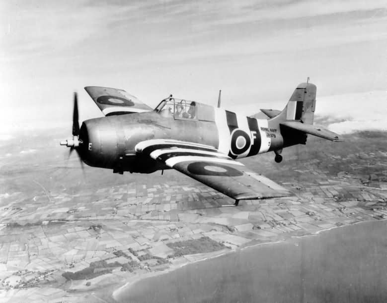 Grumman Wildcat 'F' of No 846 Squadron FAA with D-Day stripes