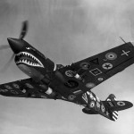 28 Air Forces Insignia Mark on P-40N 15 000th Curtiss P-40 1944