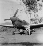 Curtiss P-40 New Guinea
