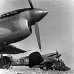 P-40 260 Squadron RAF in Libya North Africa
