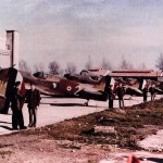Presentation Of French Curtiss P-40 of the GC II/5, Algiers North Africa