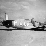 RAF P-40 Kittyhawk OK+M of the 450 Squadron RAAF North Africa