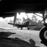 49th Fighter Group P-40 Warhawk at Darwin Australia