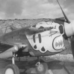 P-40 Warhawk of the 343rd Fighter Group Adak