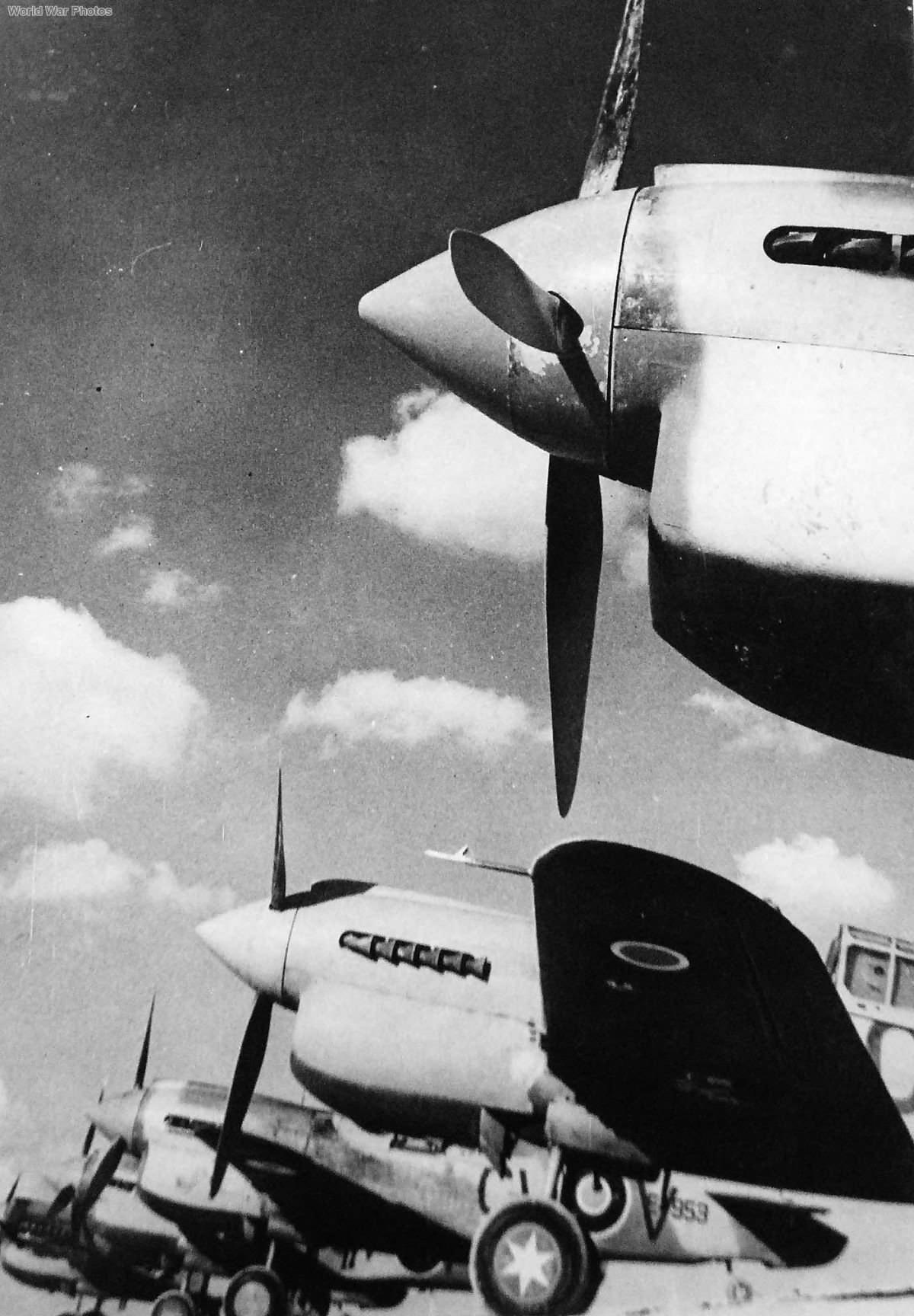 Kittyhawks of No. 3 Squadron RAAF