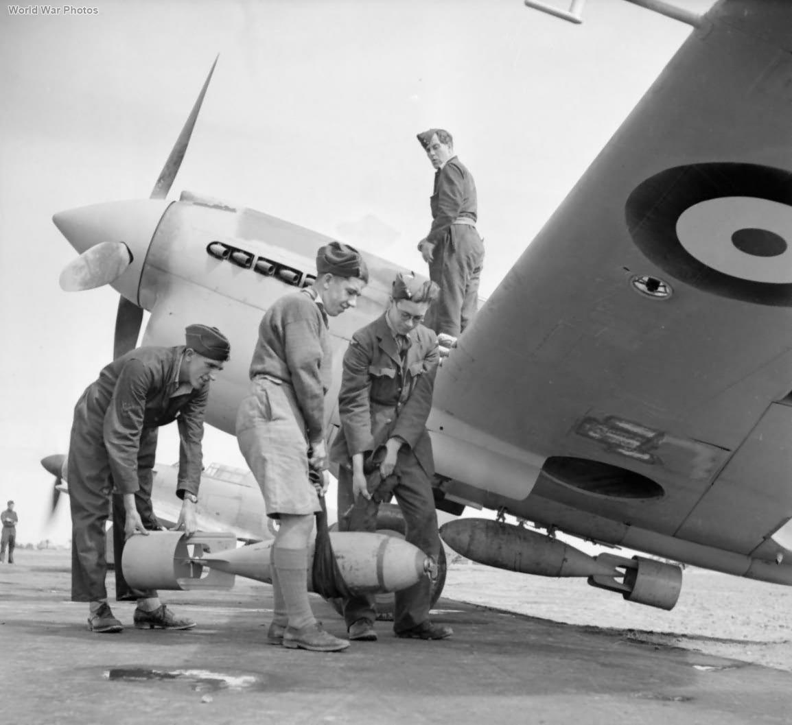 Kittyhawk Mk I with bombs Egypt