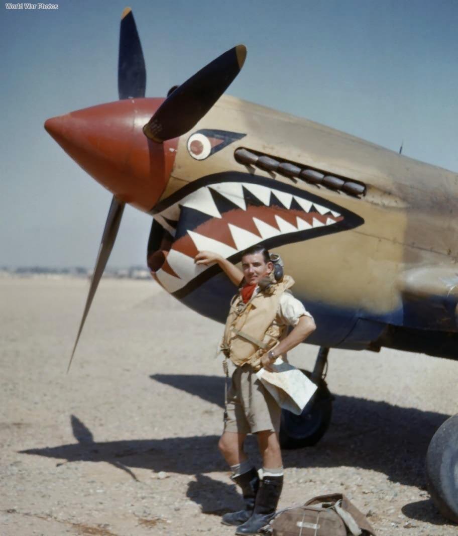 Kittyhawk Mk I of No. 112 Squadron RAF, Sidi Heneish