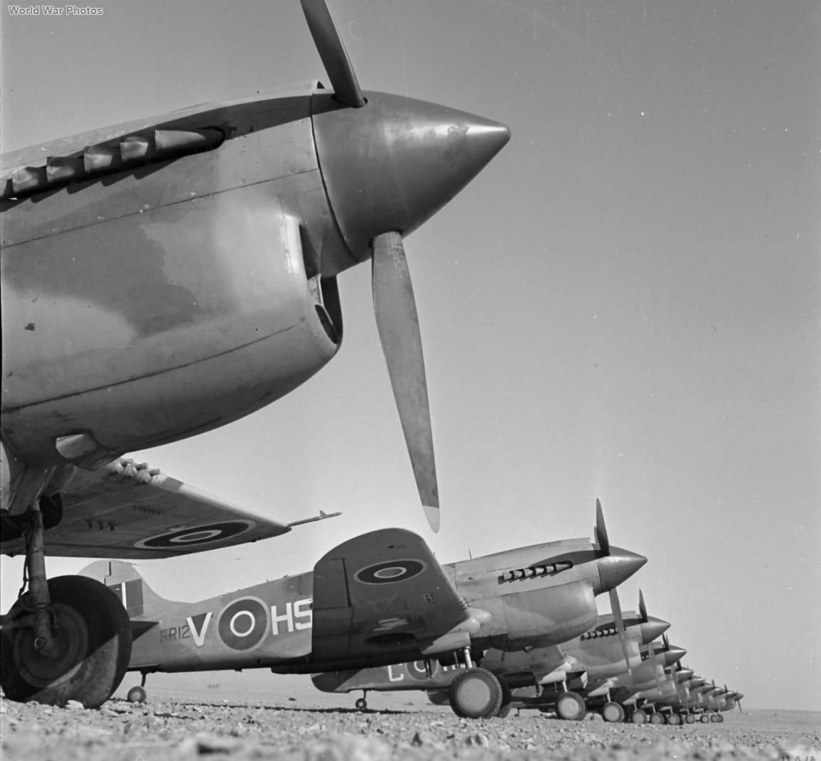 Kittyhawks III of No. 260 Squadron RAF December 1942