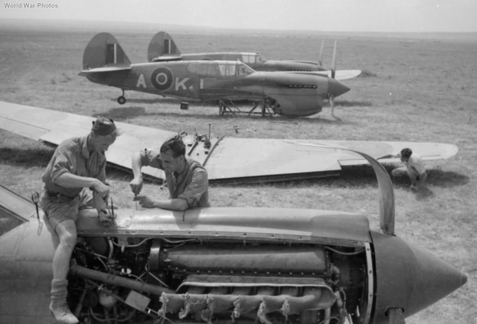 Curtiss Kittyhawks Mk I Tunisia