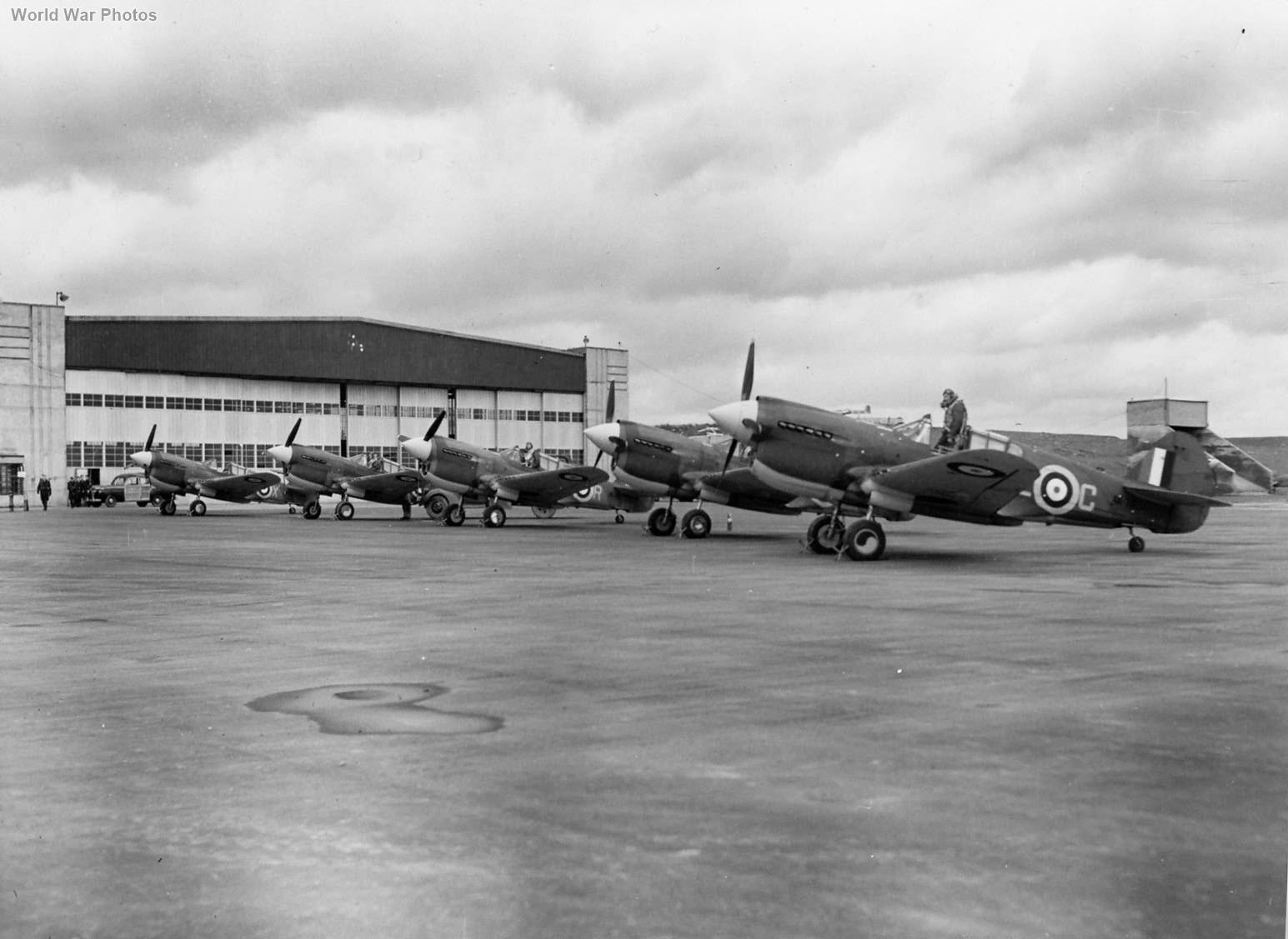 P-40s 118 Squadron RCAF
