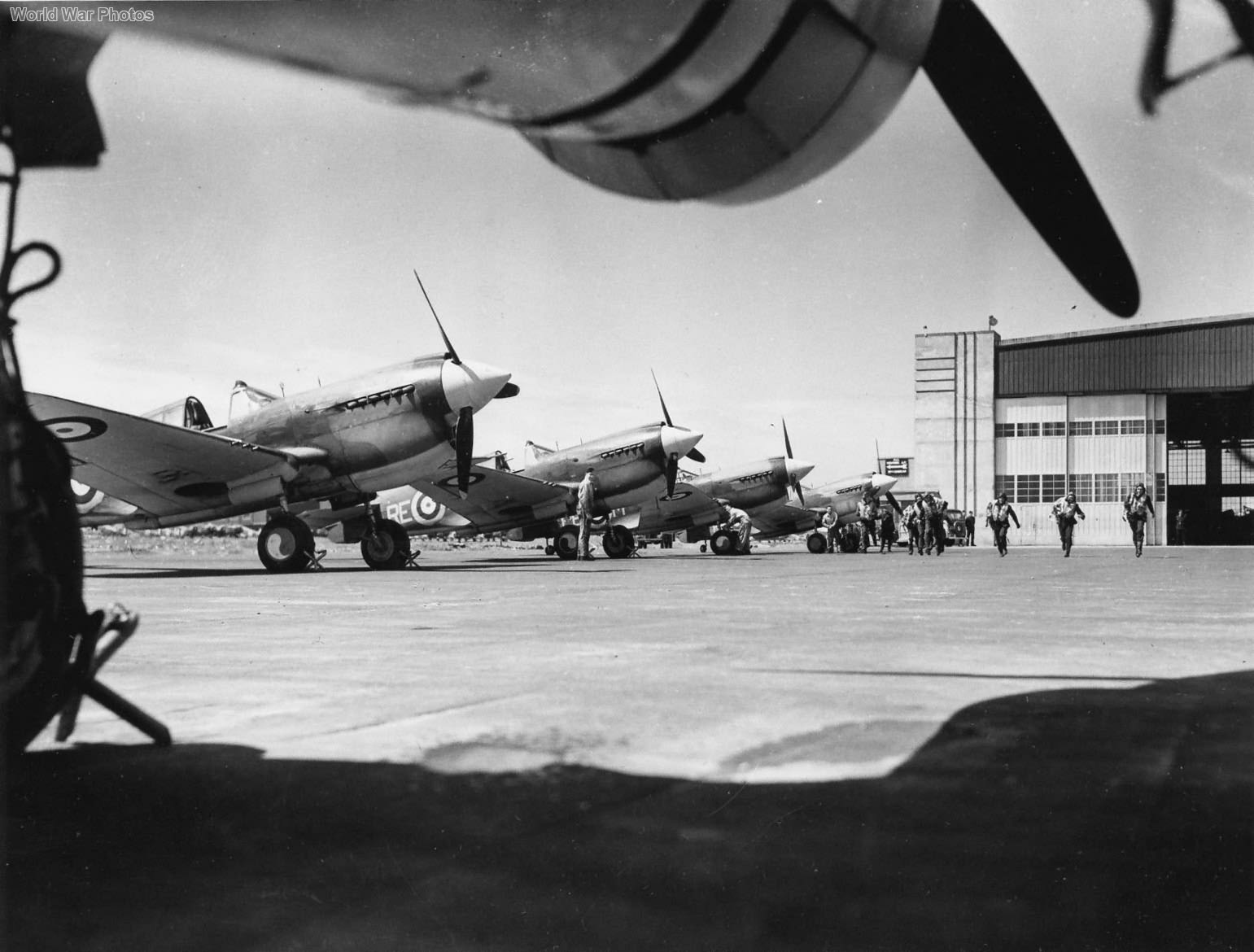 P-40s of 118 Squadron RCAF 2
