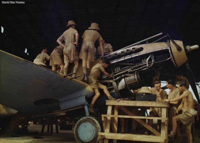 Ground crew performing maintenance on Tomahawk Egypt