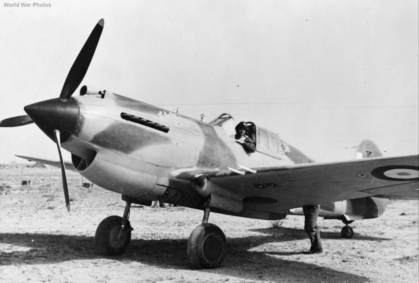 """Tomahawk IIB """"Chaka"""" of No. 5 Squadron SAAF"""