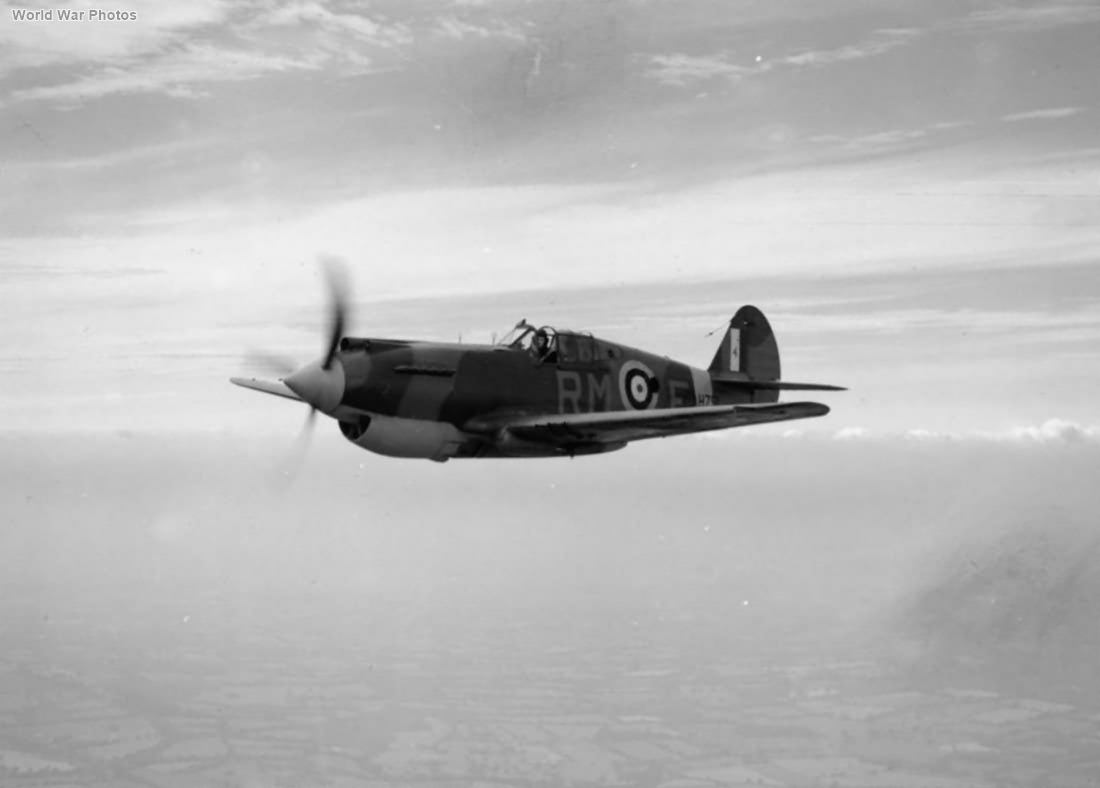 Tomahawk Mk I AH791 RM-E of No. 26 Squadron RAF in flight