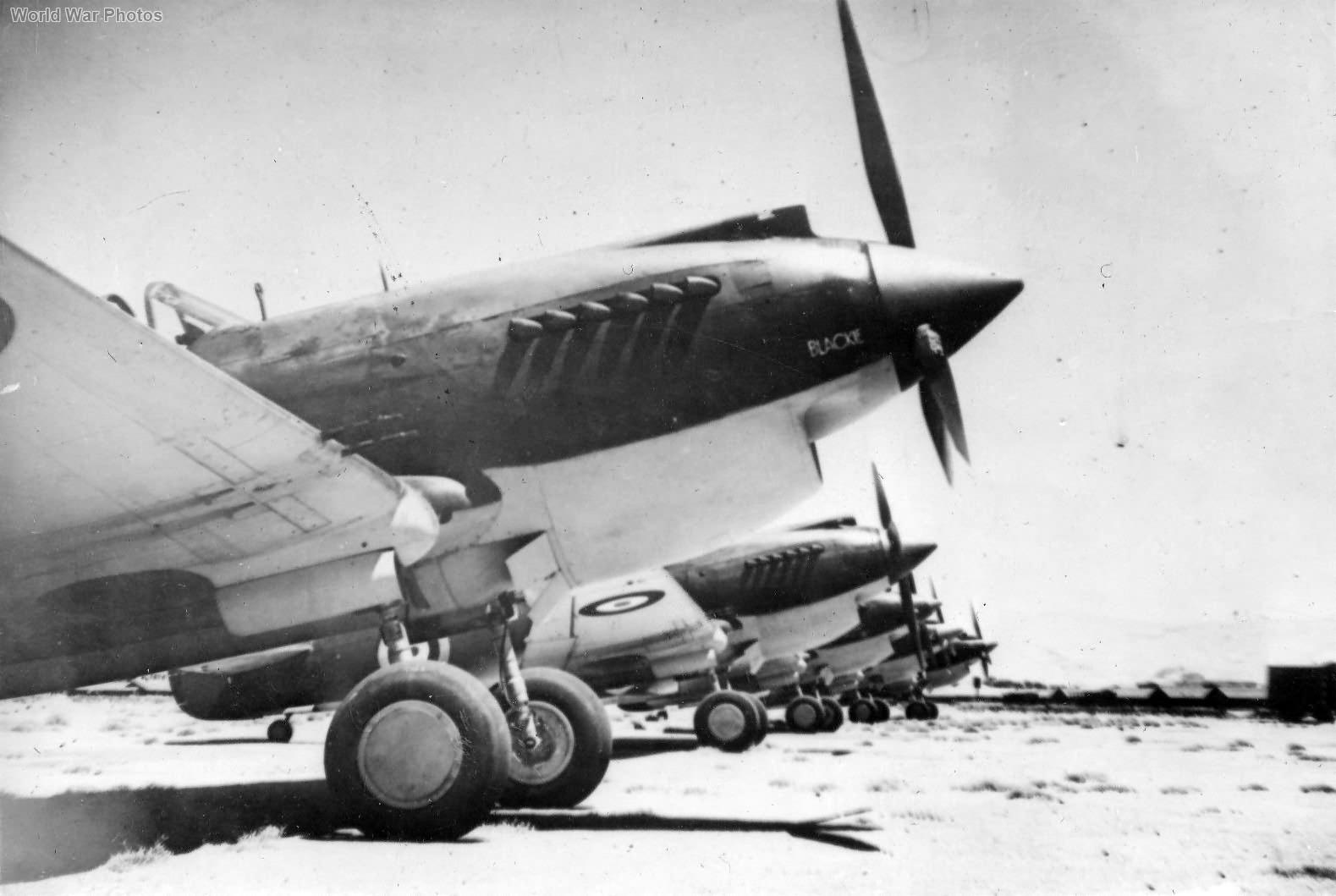 Tomahawks IIB of No. 3 Squadron RAAF Rayak Lebanon 2