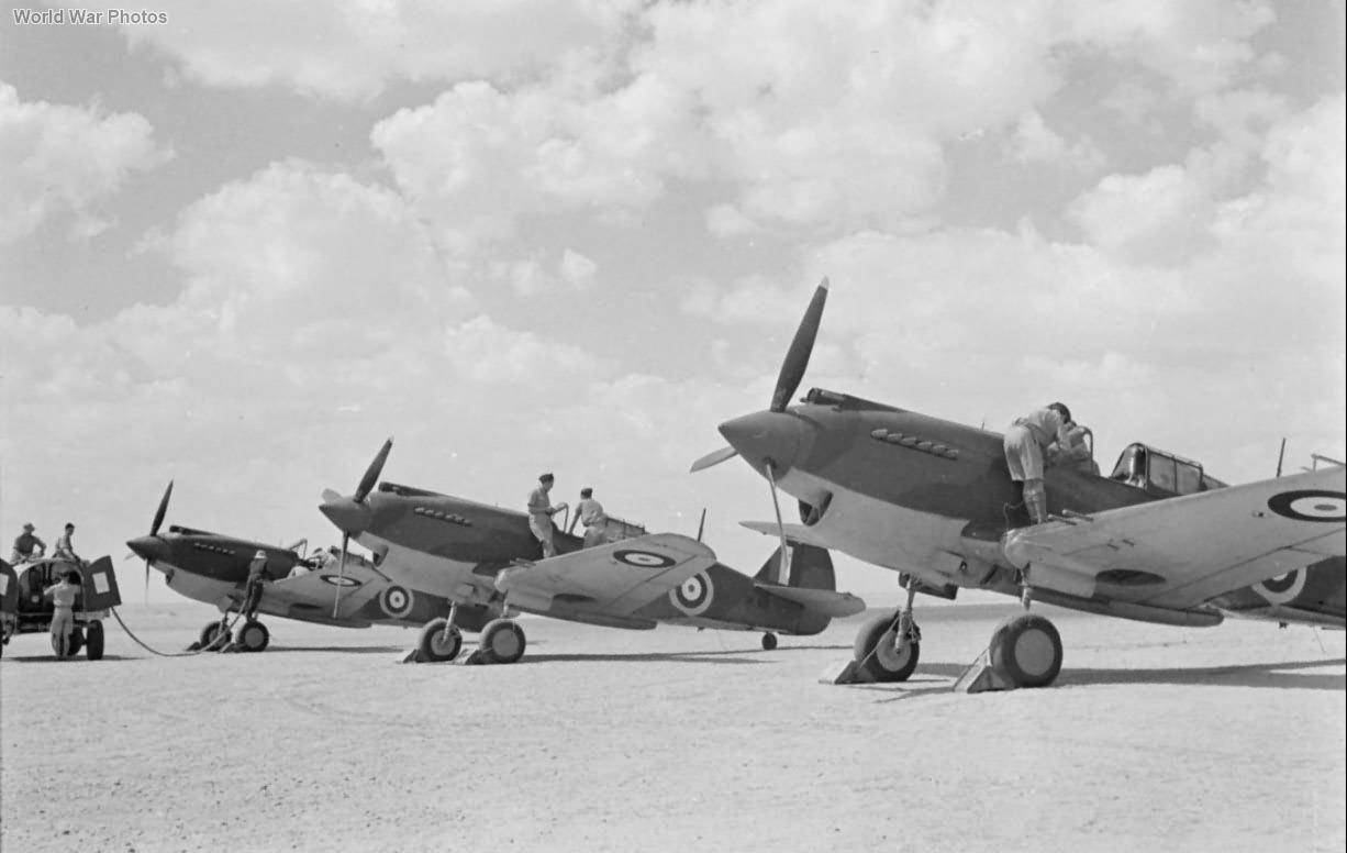 Curtiss Tomahawks Mk IIB Egypt