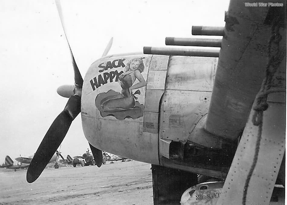 P-47 Sack Happy 318th FG
