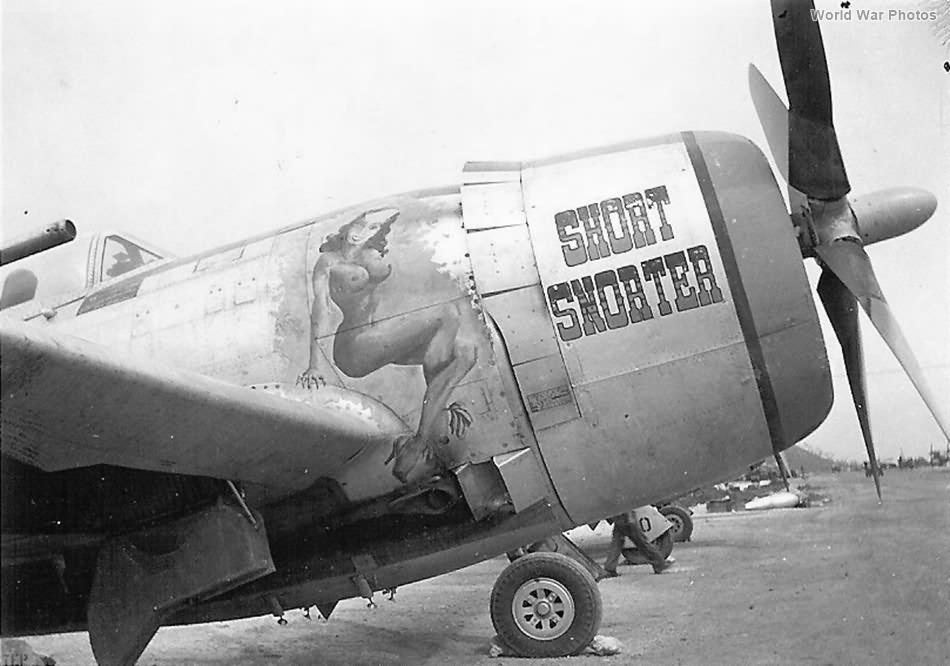 P-47 Short Snorter 318th FG