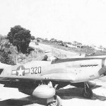 P-51D Mustang 320 44-63915 531st Fighter Squadron 21st FG
