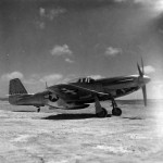 P-51D Mustang 325th Fighter Group Italy 44-13292
