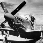 "P-51 Mustang of the 26th FS 51st Fighter Group Pilot Col David ""Tex"" Hill"