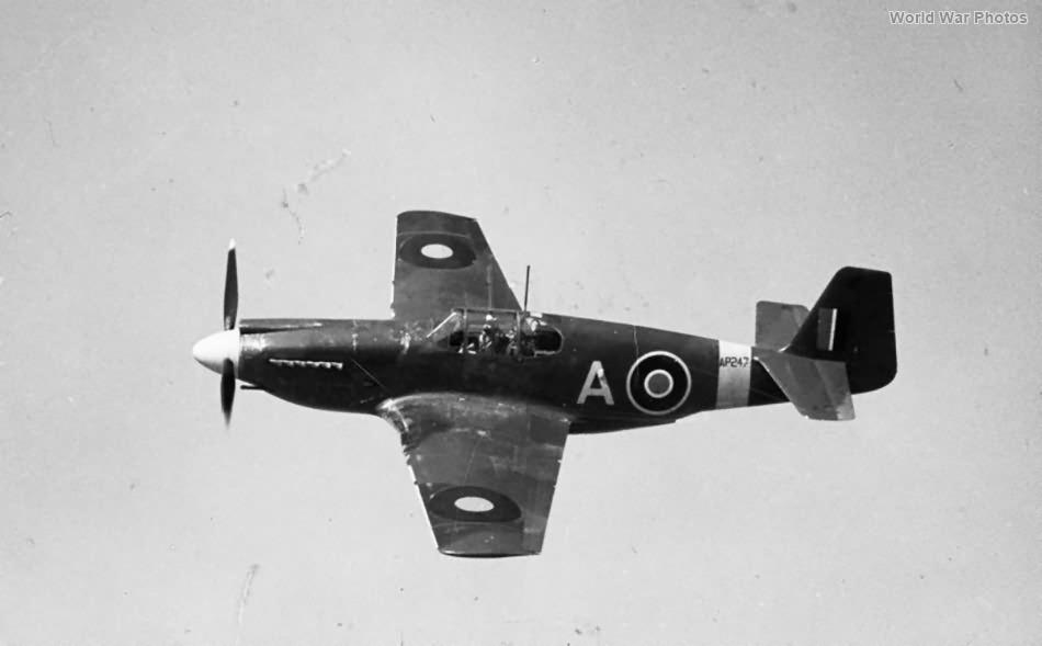 Mustang Mk I AP247 4 Sqn RAF 2
