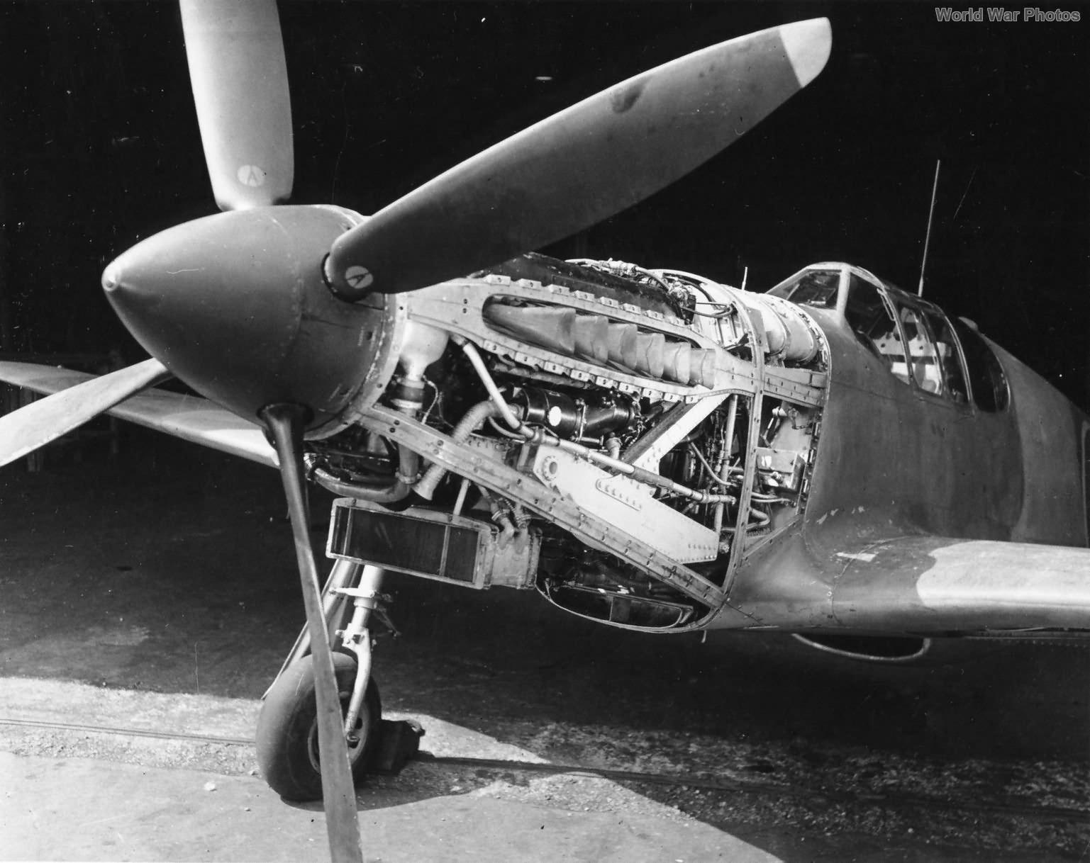P-51 AL975 Merlin