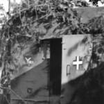 German M3 halftrack 56