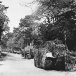 camouflaged row of m7 stands