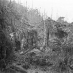 Largest Japanese Cave In Jungle Of Biak 1944