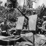 Marine 20mm AA Gun on Bougainville 1943