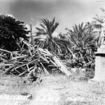 Guadalcanal Campaign 4
