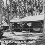 Guadalcanal Campaign 5