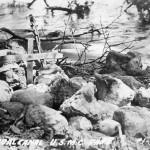 Guadalcanal Campaign 7