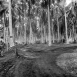 Marine at Entrance to Japanese Camp on Guadalcanal 1942