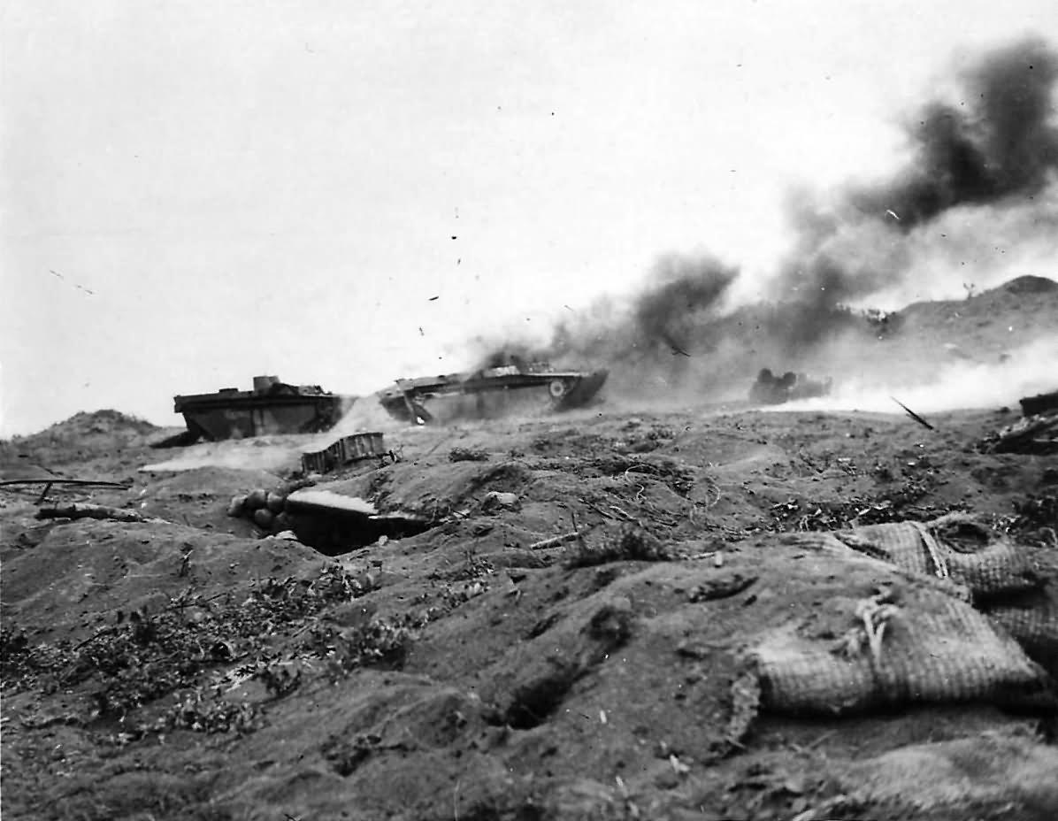 Marine Dogs World War