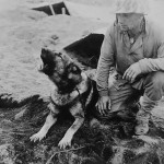 Dog and soldier Iwo Jima