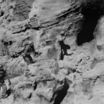 Infantrymen and Marine clear Japanese cave on Iwo Jima