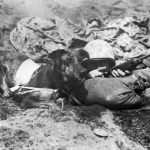 Marine gives direction to messenger dog Prince on Iwo Jima