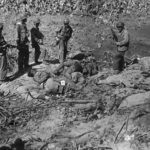 US Soldiers view bodies of Japanese troops killed during the invasion of Makin