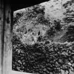 27th Division Troops Clear Japanese Caves on Okinawa