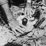 Cabbage Booby Trapped with Type 97 grenade by Japanese on Okinawa