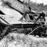 "Marine LVT(A)-4 ""Lady Luck"" D12 of the 3rd Armored Amphibian Battalion on Peleliu"