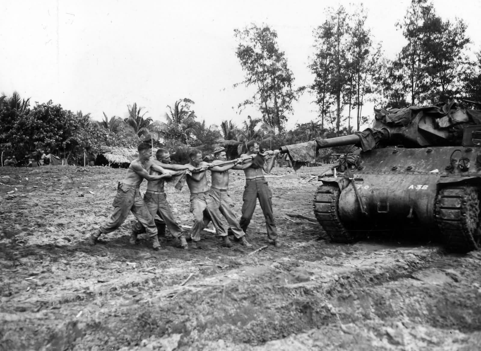 M10 Wolverine tank destroyer | World War Photos