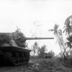 M10 Wolverine of 77th Infantry Division Leyte Island 1944