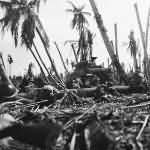 M4 Sherman Wadke Island New Guinea PTO
