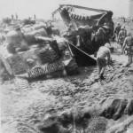 M4A2 Sherman of the 5th Tank Battalion, Red Beach Iwo Jima