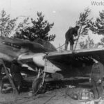 Ground crew performing maintenance on an Il-2