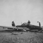 IL 2 Sturmovik 5